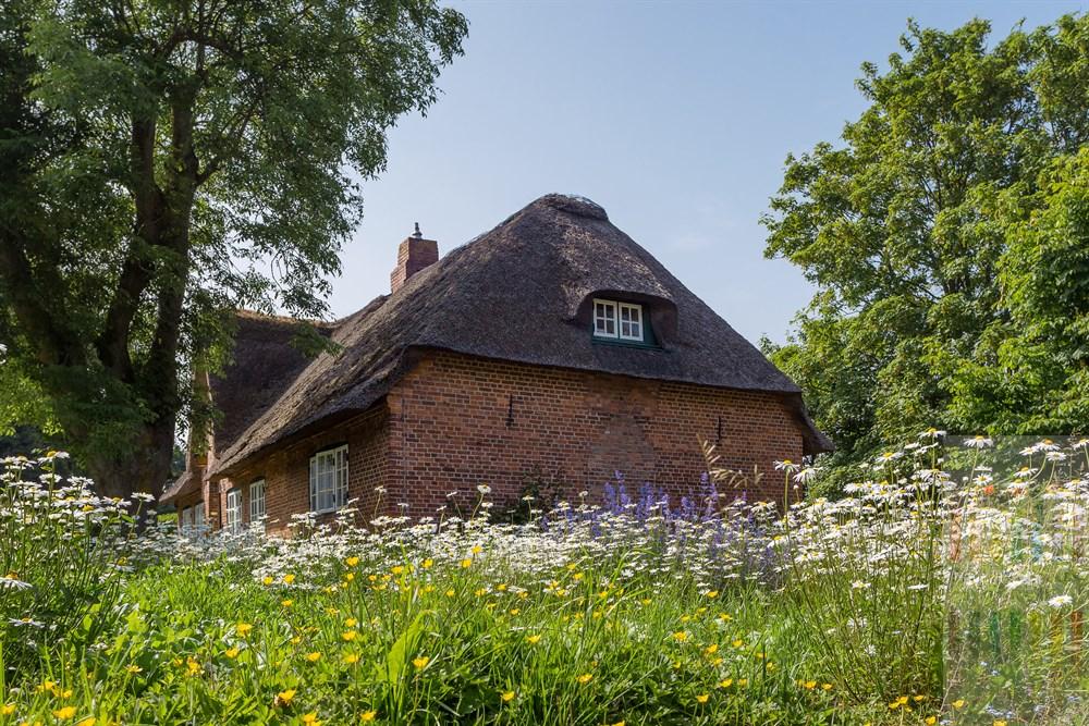 Histporosches Reetdachhaus in Keitum/Sylt mit blühenden Sommernblumen im Garten