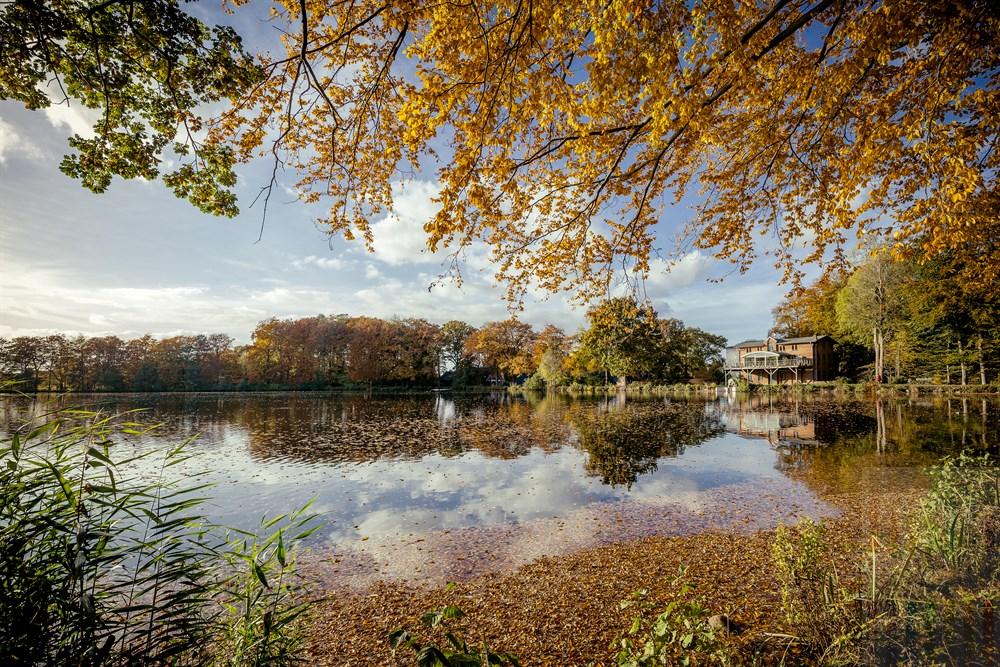 Bäume in buntem Herbstlaub säumen das Ufer des Mühlenteiches in Weddelbrook (Kreis Segeberg)