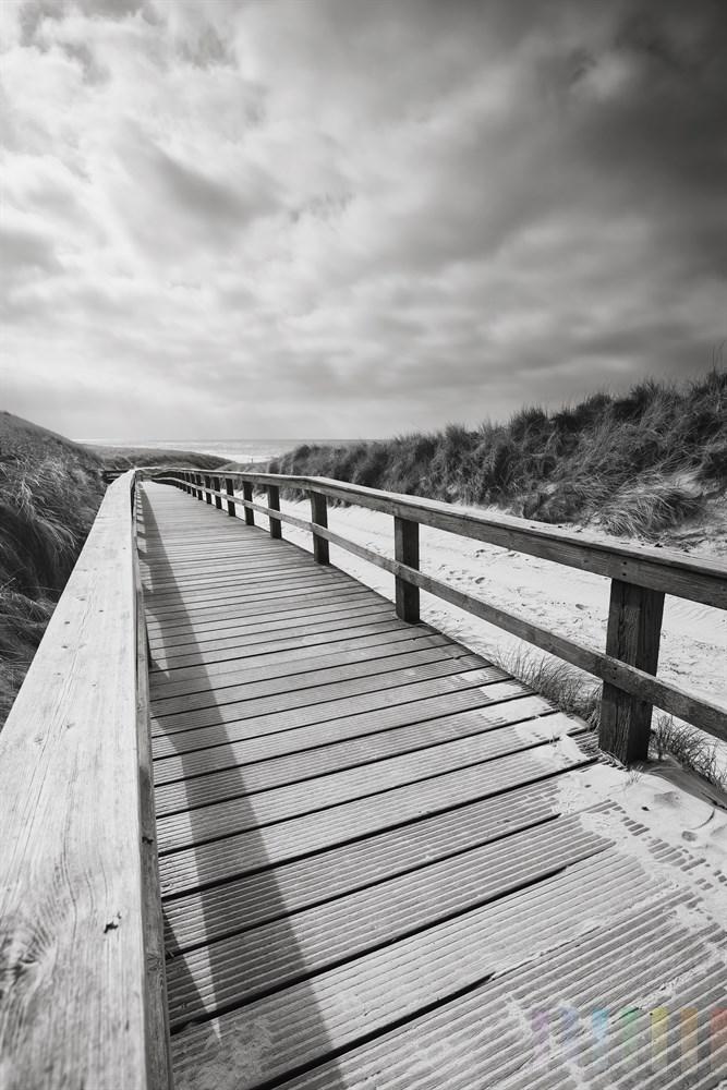 Holzweg führt durch Dünen zum Nordseestrand von Wenningstedt/Sylt, monochom, schwarzweiss