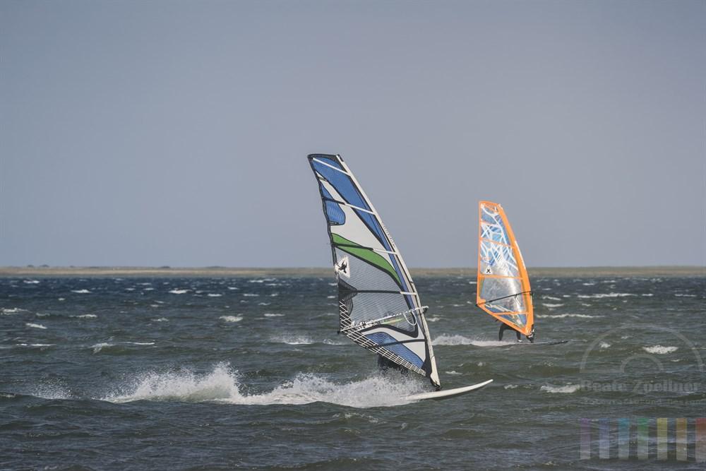 Zwei Windsurfer liefern sich auf der Schlei vor Maasholm bei kräftigem Ostwind ein Rennen