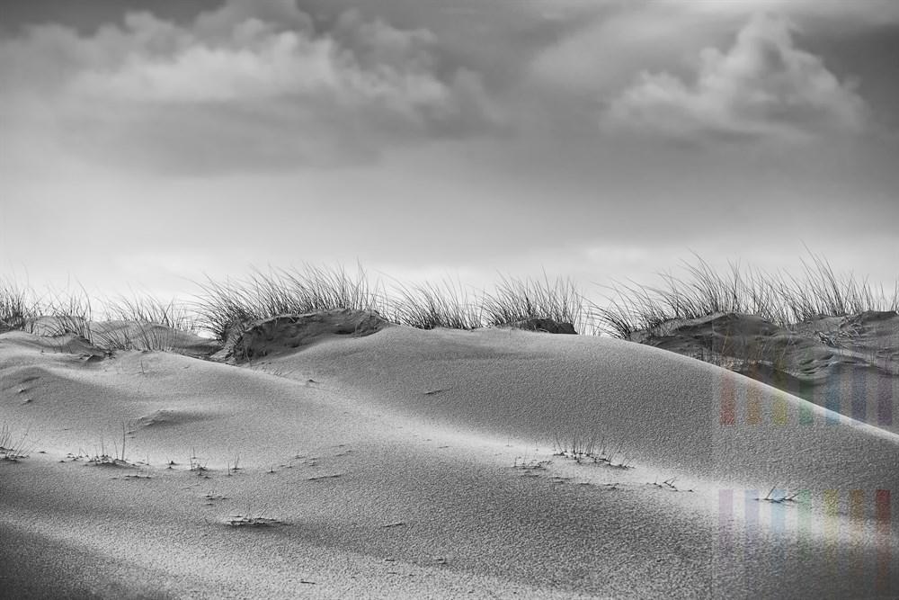 Fortschreitende Erosion an den Dünen des Naturschutzgebietes Hörnum Odde im Süden der Insel Sylt
