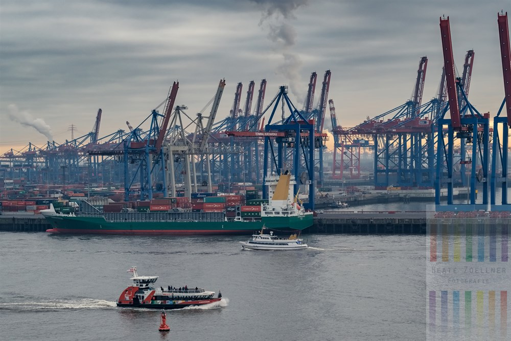 Blick auf den Buchard-Terminal im Hamburger Hafen. Kleine Fährschiffe sind auf der Elbe unterwegs, ein Frachtschiff liegt am Terminal