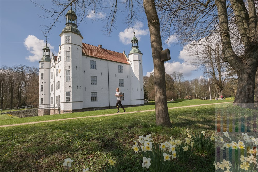 Narzissen blühen und eine junge Frau joggt durch den Park am Schloss Ahrensburg, frühlinghshaft-sonnig