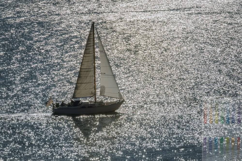 Letzter Segeltörn auf der Elbe der Saison in der Oktobersonne. Das Wasser glitzert in der Sonne, während die Segelyacht im Gegenlicht flußabwärts schippert. Blick vom Hirschpark auf den Fluss