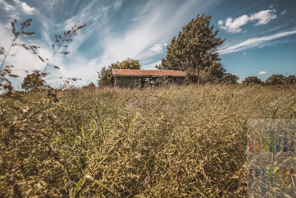 Alter Schuppen verfällt auf einem brach liegenden ehemals landwirtschaftlich genutztem Feld