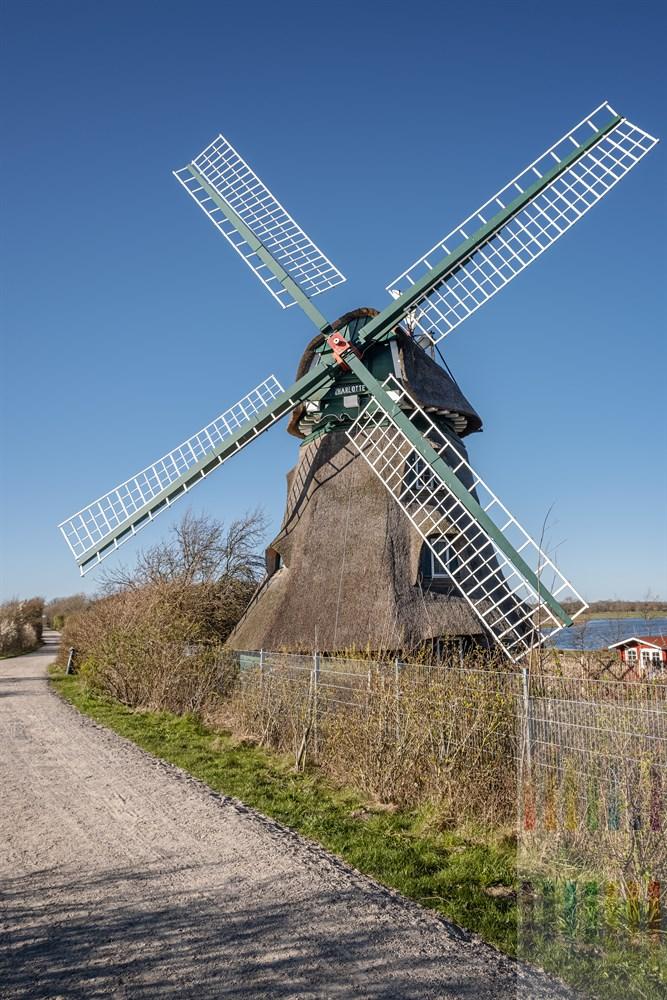 """Die reetgedeckte Windmühle """"Charlotte"""" (Baujahr 1826)  gilt als Wahrzeichen für das Naturschutzgebiet Geltinger Birk an der Ostsee"""