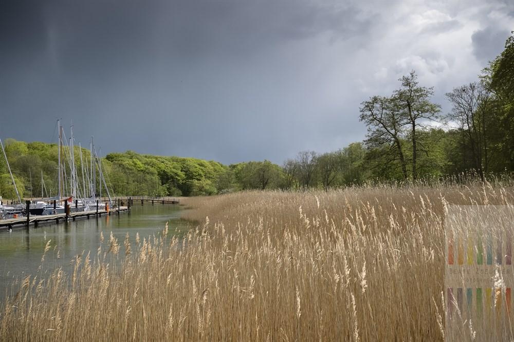 Bedrohliche Wolken über Schilfgürtel und Yachthafen von Glücksburg an der Flensburger Förde