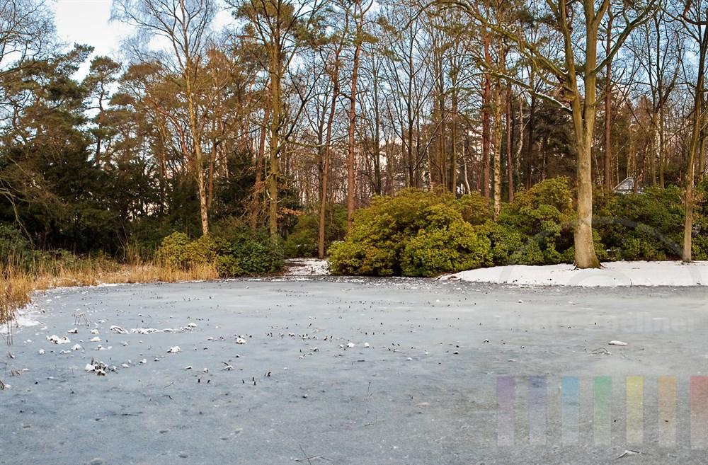 Winterliche Idylle am Teich im Hamburger Sven-Simon-Park