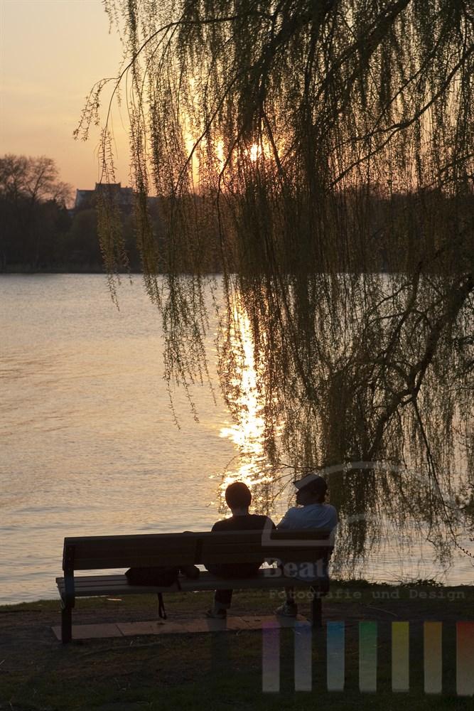 Sonnenuntergang an der Hamburger Aussenalster im Frühling