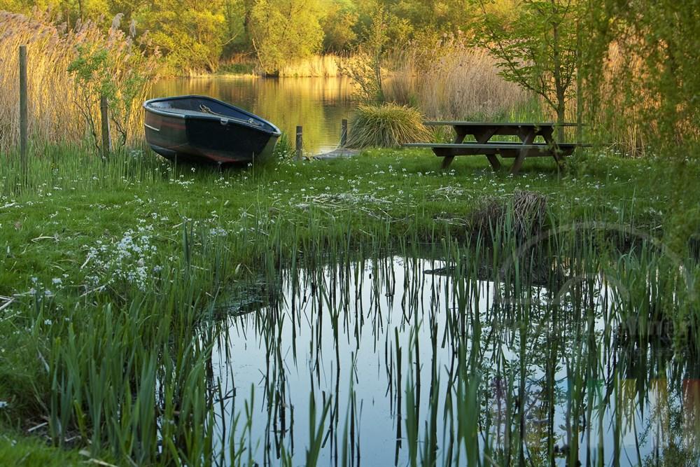 idyllischer Garten am Ufer eines Sees im Frühling bei tiefstehender Abendsonne