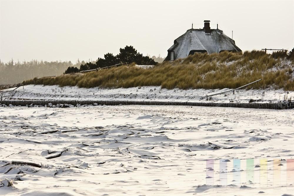 Reetdachhaus am vereisten und verschneiten Wattenmeer