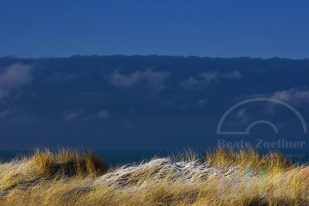 Blick über verschneite Dünengräser im Sonnenschein auf die Nordsee und blauen Himmel
