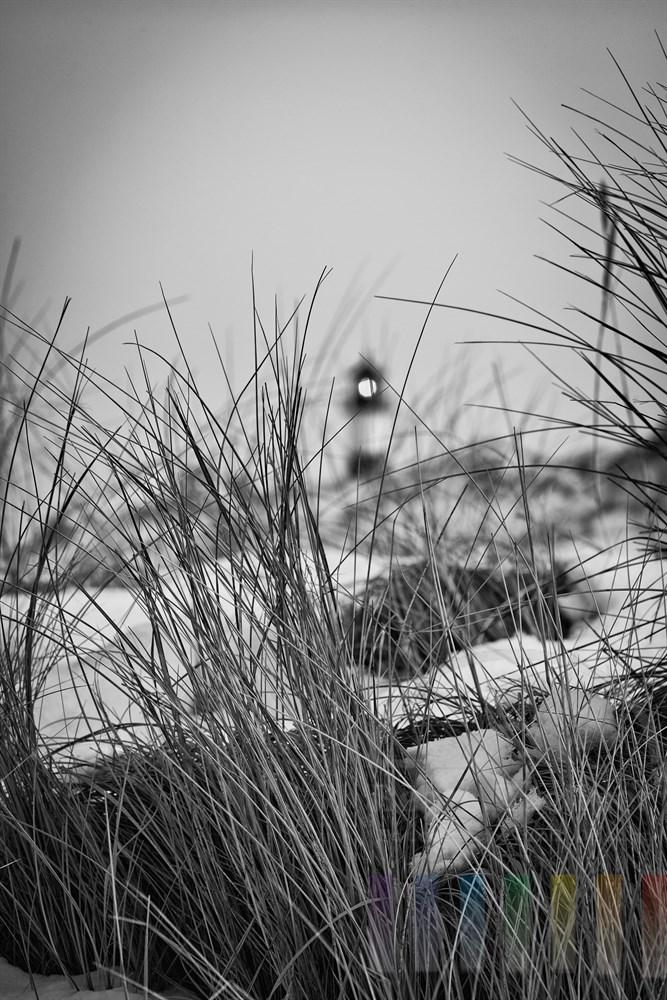 Blick durch vergilbte und verschneite Duenengraeser auf einen Leuchtturm am Sylter Ellenbogen