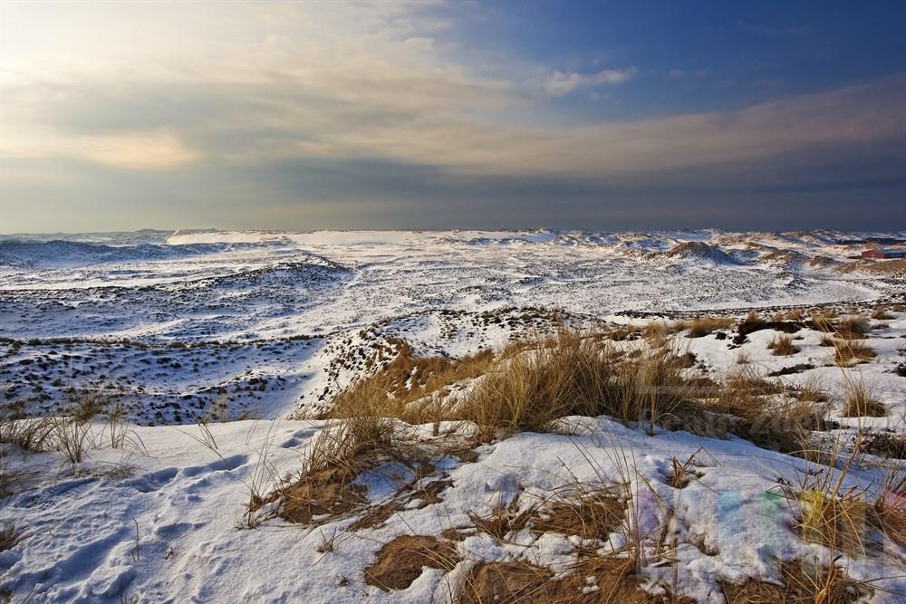Blick über die verschneiten Sylter Wanderdünen, sonnig