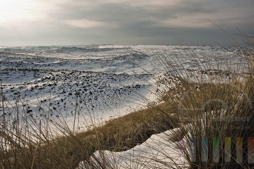 Blick auf die verschneiten Sylter Wanderdünen im letzten Sonnenlicht des WIntertages