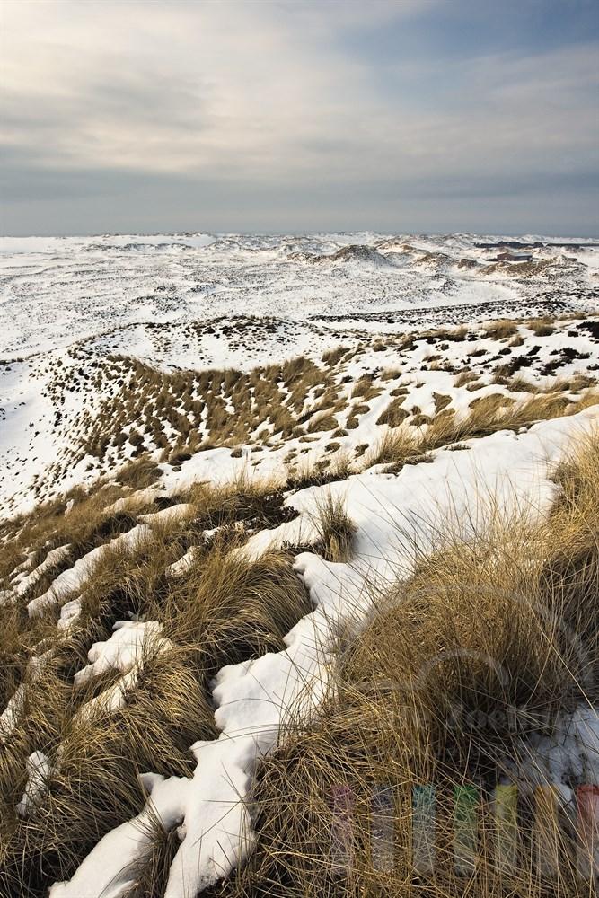 Blick auf die verschneiten Sylter Wanderdünen im letzten Sonnenlicht eines Wintertages