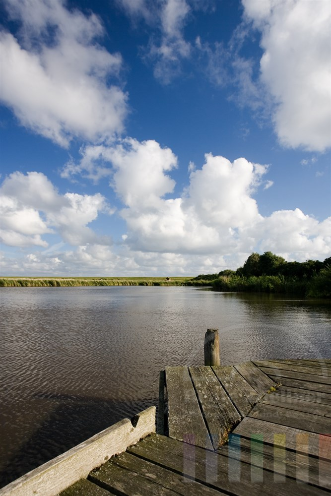 Morscher Angelsteg am Teich