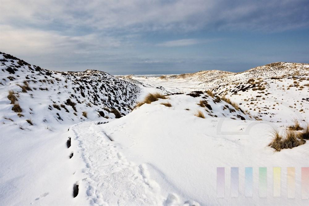 Weg durch die verschneite Sylter Dünenlandschaft, sonnig