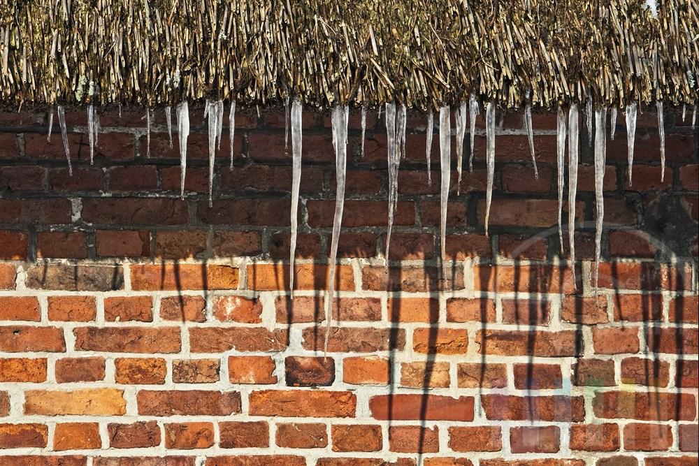Eiszapfen hängen am Reetdach eines historischen Friesenhauses in Keitum/Sylt, sonnig