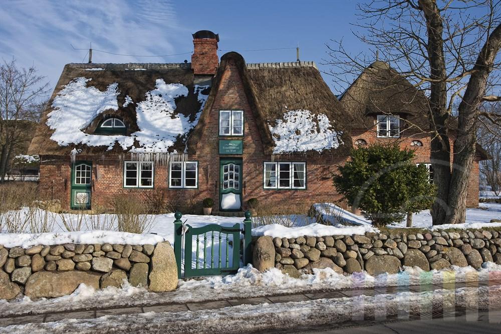 Historisches Friesenhaus in Keitum/Sylt mit in der Sonne schmelzenden Schneeresten auf dem Reetdach. Das Tauwasser bildet Eiszapfen