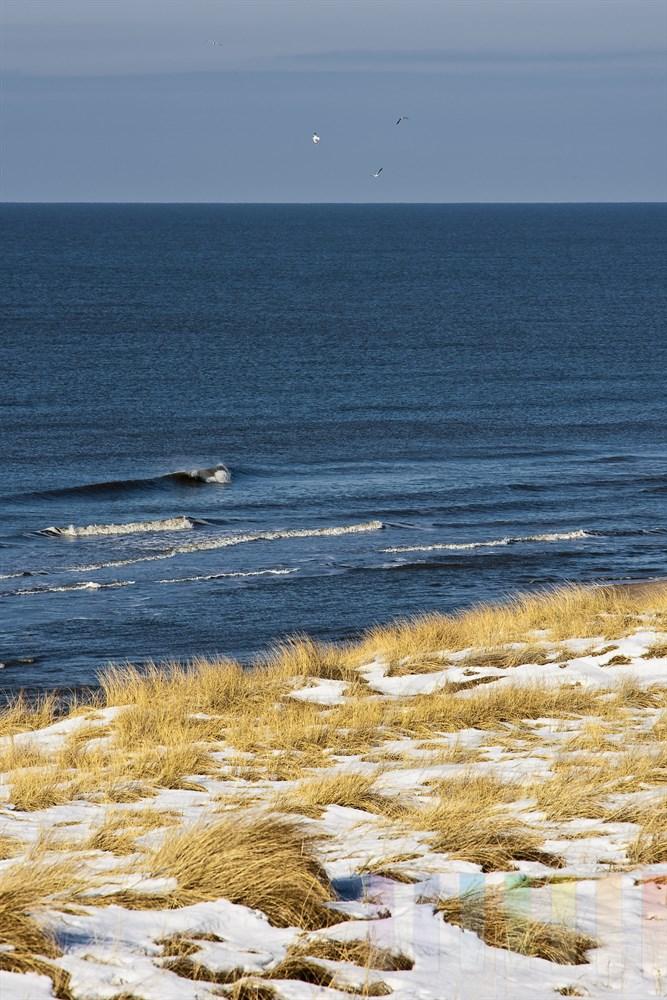Blick über verschneite Dünen bei Rantum/Sylt auf die Nordsee-Brandung und fliegende Möwen, sonnig
