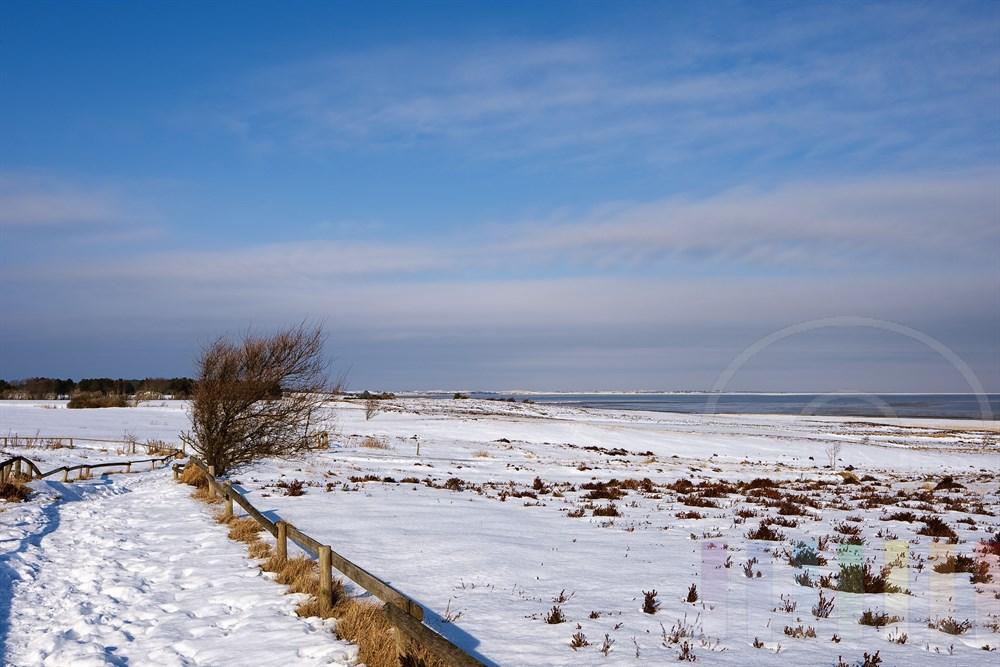 verschneite Landschaft in der Braderuper Heide - im Hintergrund am Horizont die Ortschaft List und die Wanderdünen