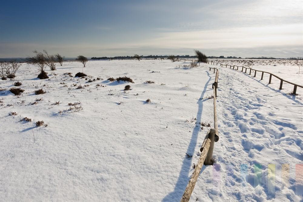 verschneite Landschaft in der Braderuper Heide, Blickrichtung Ortschaft Braderup, sonnig