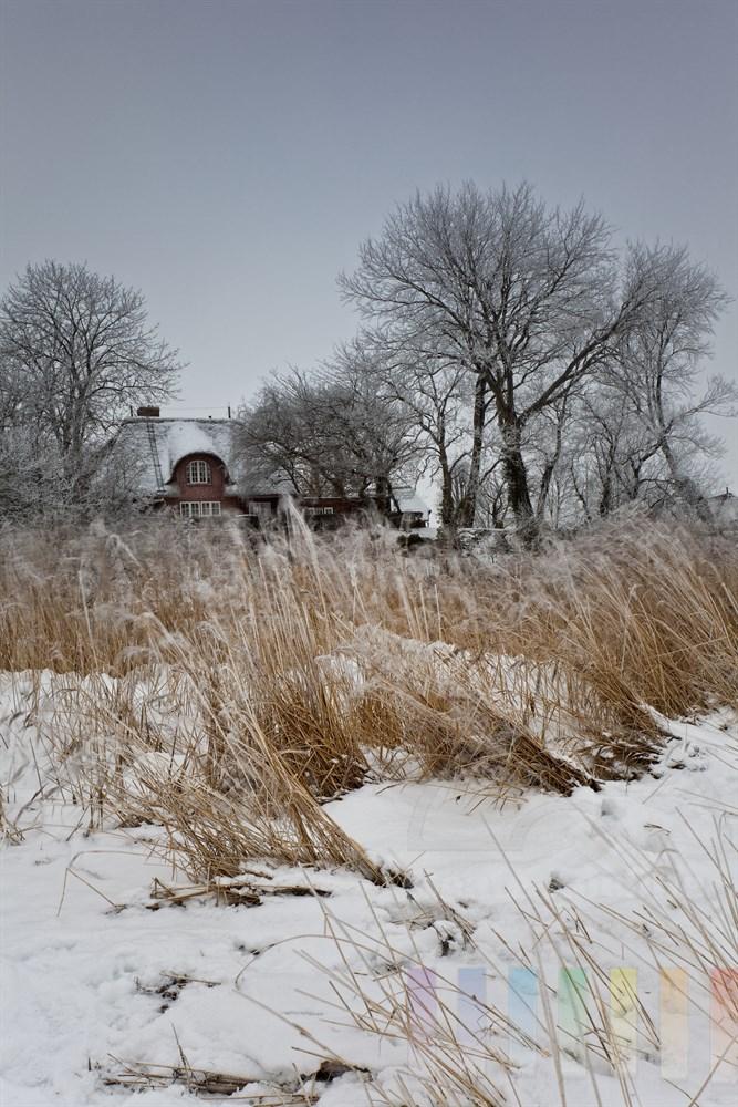 verschneite Wattenmeerkueste vor Keitum/Sylt, bedeckter Himmel