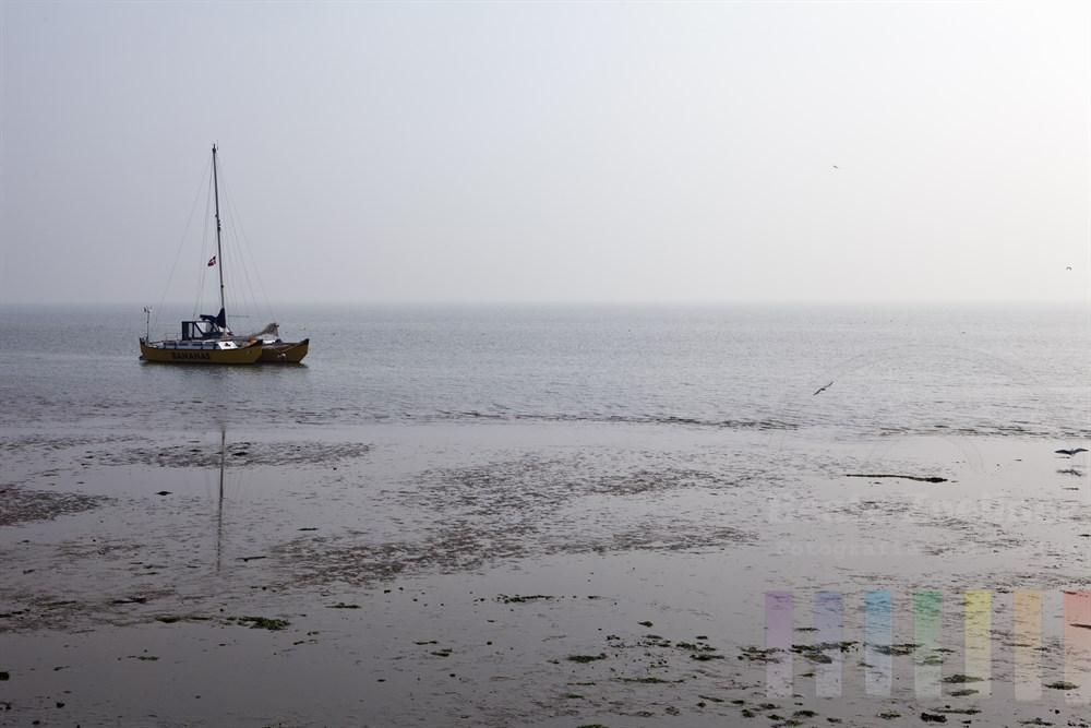Katamaran-Segelboot liegt bei Niedrigwasser im Wattenmeer vor der Insel Sylt, Nebelstimmung