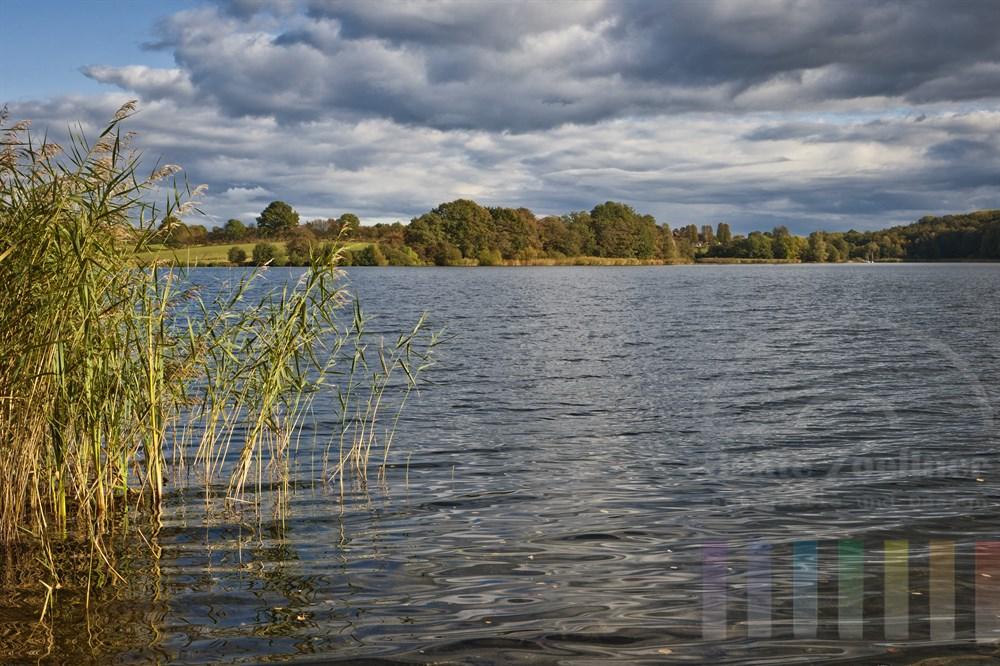 Sonnige Herbststimmung am Ufer des Großen Segeberger Sees