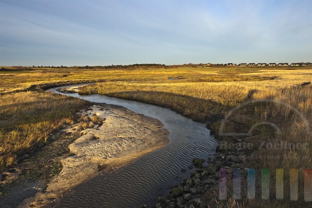 Morgenstimmung an der Sylter Ostküste bei Munkmarsch. Die Wiesen werden regelmäßig vom Meer überspült