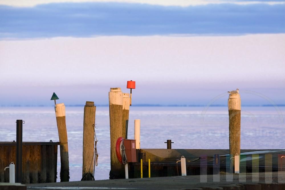 Winterliche Stimmung am Hafen von Munkmarsch/Sylt