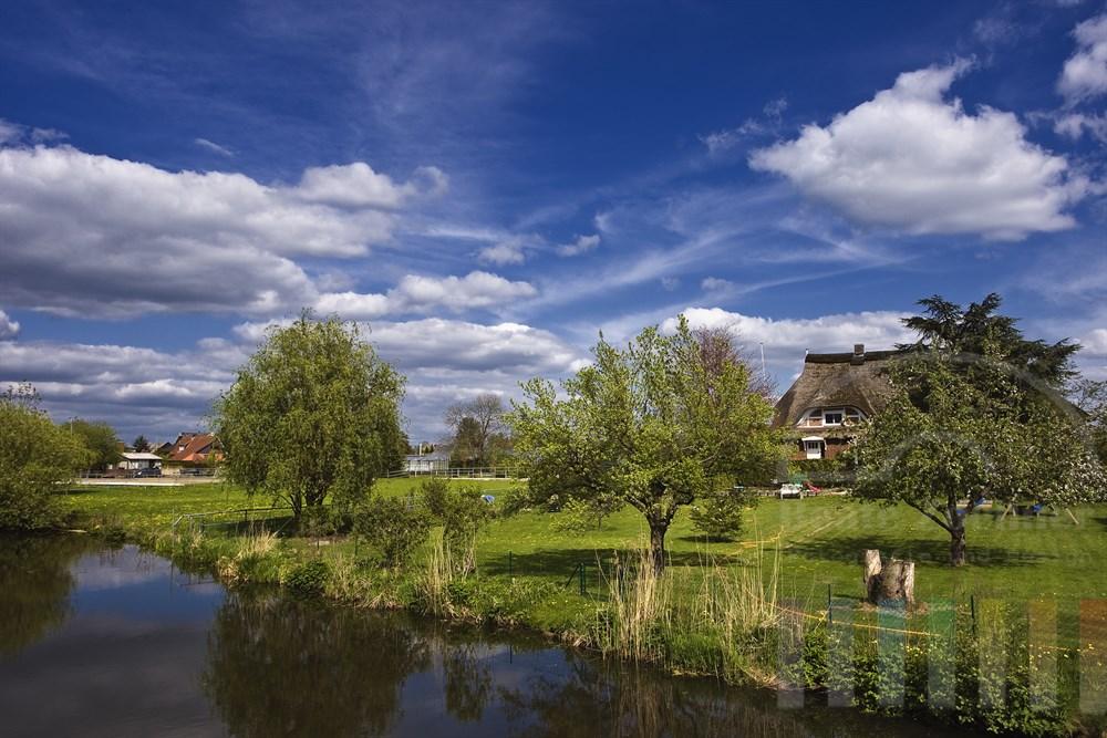 Blick in fruehlingshafte Gaerten am Ufer der Dove-Elbe in den Hamburger Vierlanden, sonnig