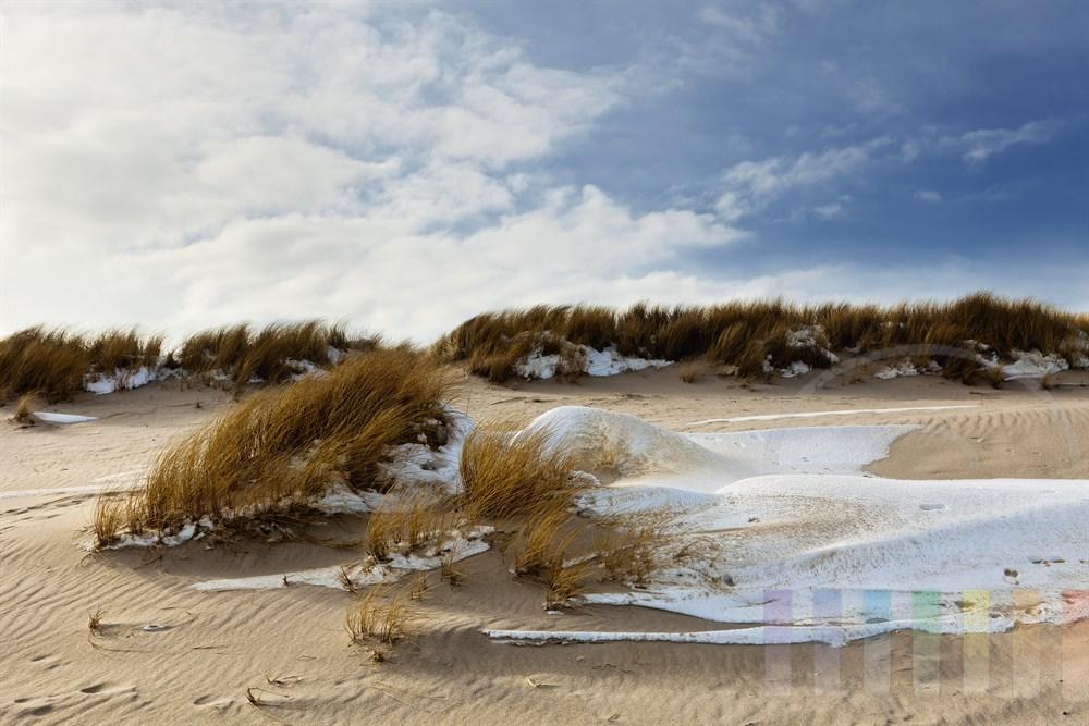 Schneereste halten sich zwischen Duenengraesern am Sylter Ellenbogen, sonnig