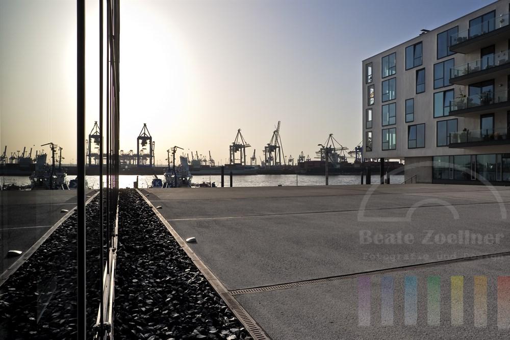 """Moderne Büro- und Wohngebäude (""""Elbperlen"""") am Ufer der Elbe in Hamburg-Neumühlen mit Blick auf den Fluss und die Hafenanlagen"""