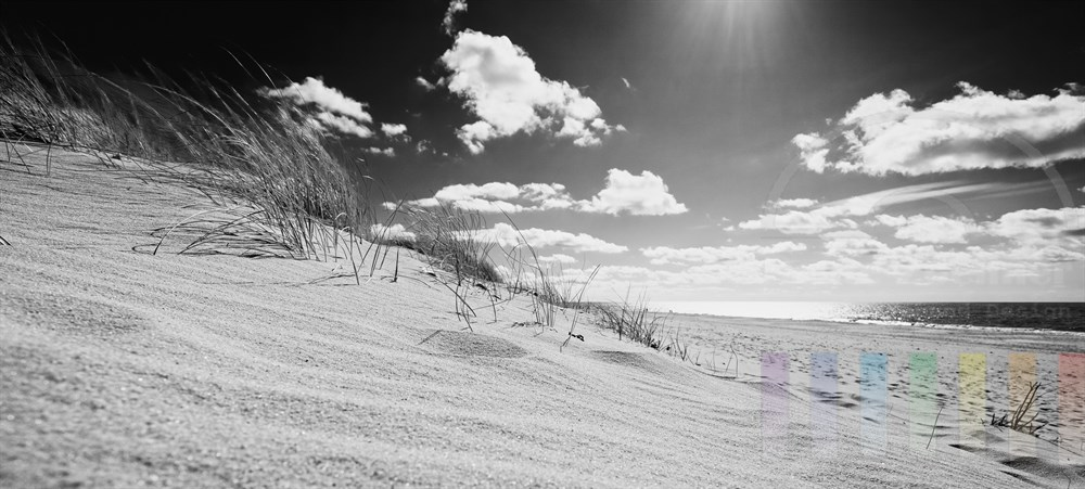 Blick aus den Sylter Duenen Richtung Nordseestrand, sonnig, Bodenperspektive