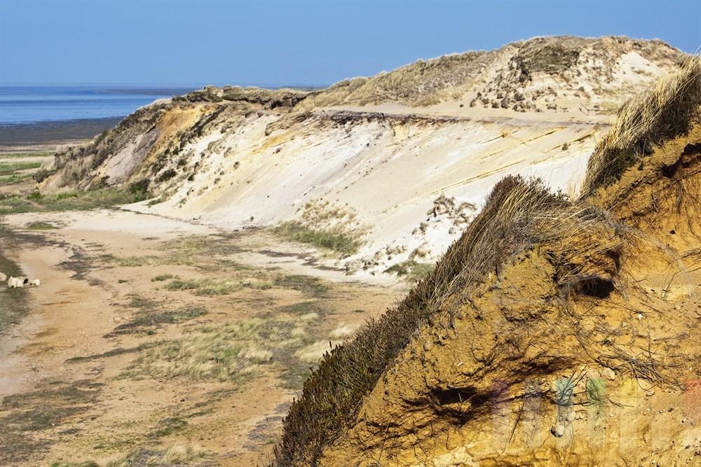 Das Morsumkliff liegt an der oestlichen Spitze der Insel Sylt und ist das aelteste Naturschutzgebiet der Insel