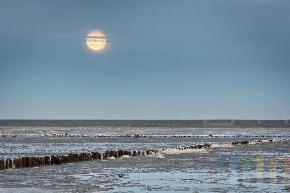 Vollmond steht ueber dem mit Eisschollen bedeckten Wattenmeer vor Keitum/Sylt, blaue Stunde