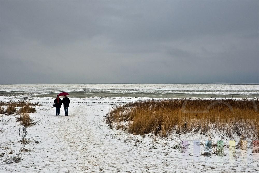 Urlauber mit Regenschirm spazieren im Schneefall an der Sylter Wattenmeerküste bei Keitum
