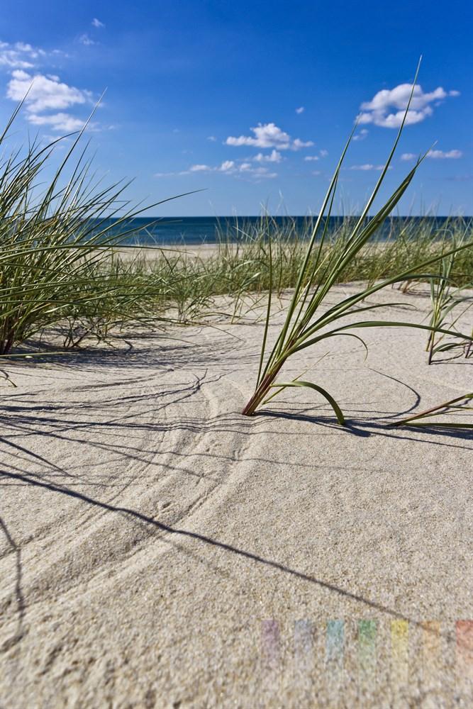 Wind malt mit Grashalm Halbkreis in den Sand, im Hintergrund die Nordsee