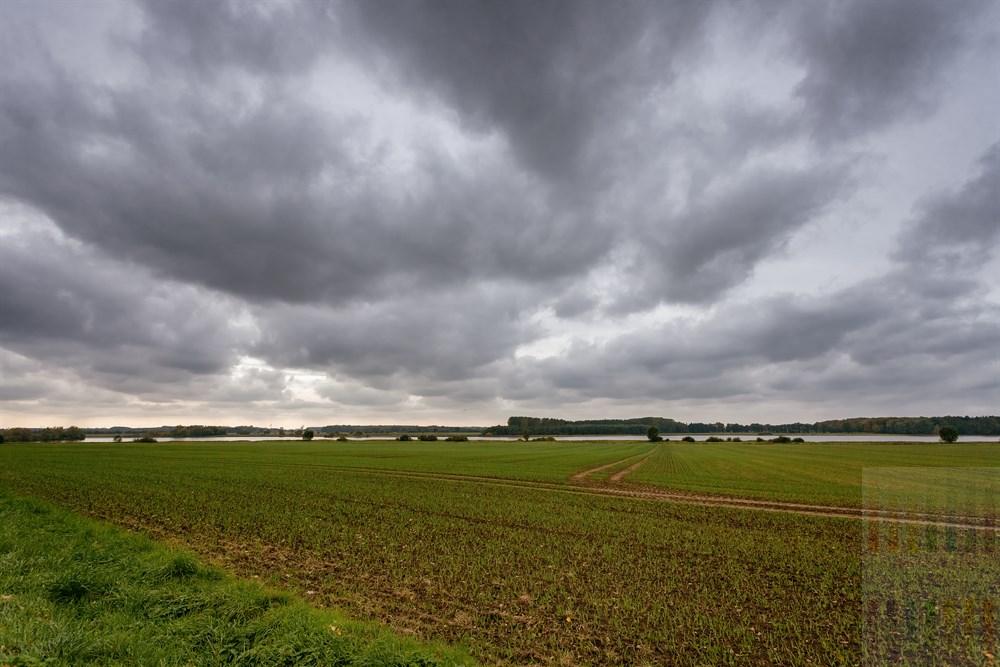 Landwirtschaftlich geprägte Landschaft unter tief hängenden Wolken am Wardersee (Kreis Segeberg), herbstlich