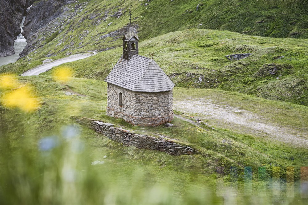Kleine Bergkapelle mit Holzschindeldach am Pasterzenhaus an der Großglockner-Hochalpenstraße, links fließt das Wasser aus dem Pasterzengletscher durch eine Klamm zu Tal, im Vordergrund blühende Wiesenblumen
