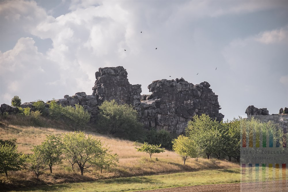 Krähen kreisen am Wolkenhimmel über der bizarren Teufelsmauer bei Weddersleben an einem spätsommerlichen Septembertag in Sachsen-Anhalt