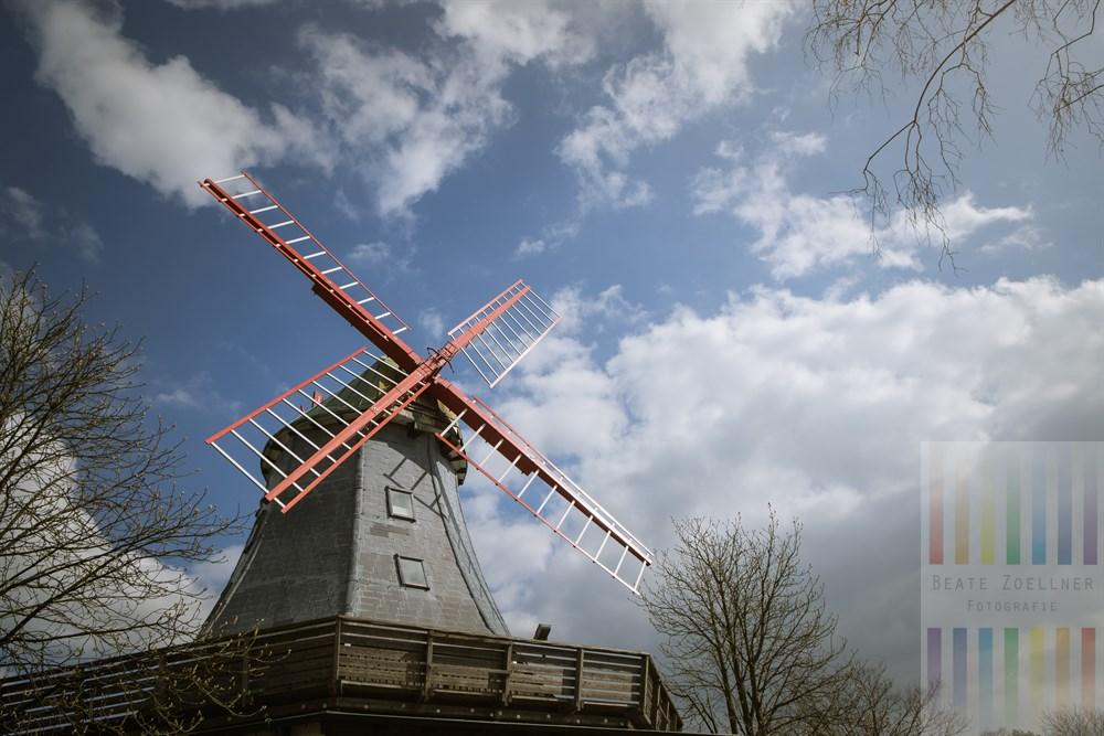 Die historische Holländer-Mühle (Baujahr 1896) ist das Wahrzeichen der Gemeinde Hamfelde im Kreis Herzogtum Lauenburg. Sie dient heute als Restaurant und Hotel. Der Mühlbetrieb wurde 1954 eingestellt