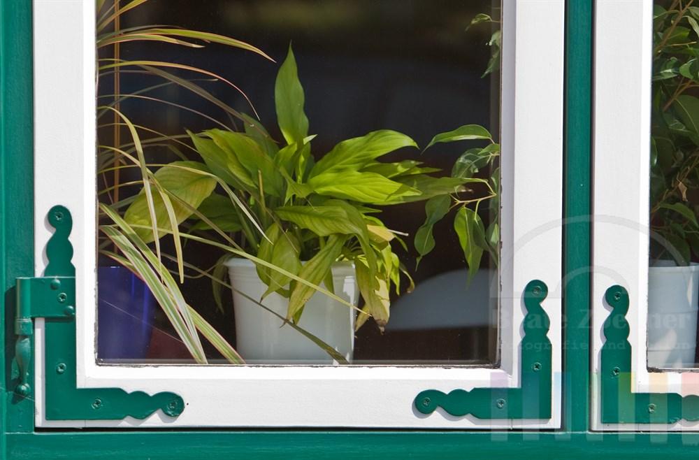 Blick durch Fenster mit nostalgischen Beschlägen auf Zimmerpflanzen in Töpfen auf der Fensterbank
