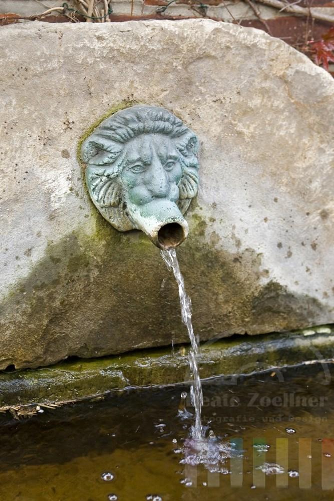 Wasser speiender Löwenkopf an einem Brunnen