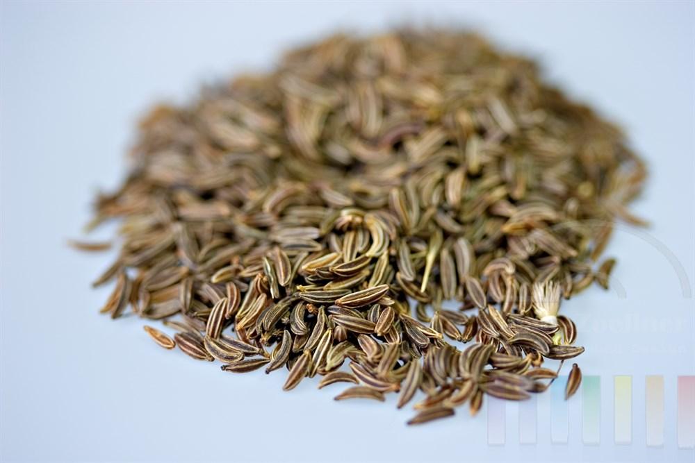 angehäufte Kümmel-Samen auf hellem Grund