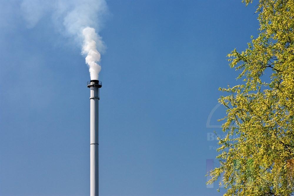 Symbolfoto: Industrie-Schornstein bläst weisse Emissionswolke in den blauen Himmel, ein Baum (blühende Weide) steht daneben