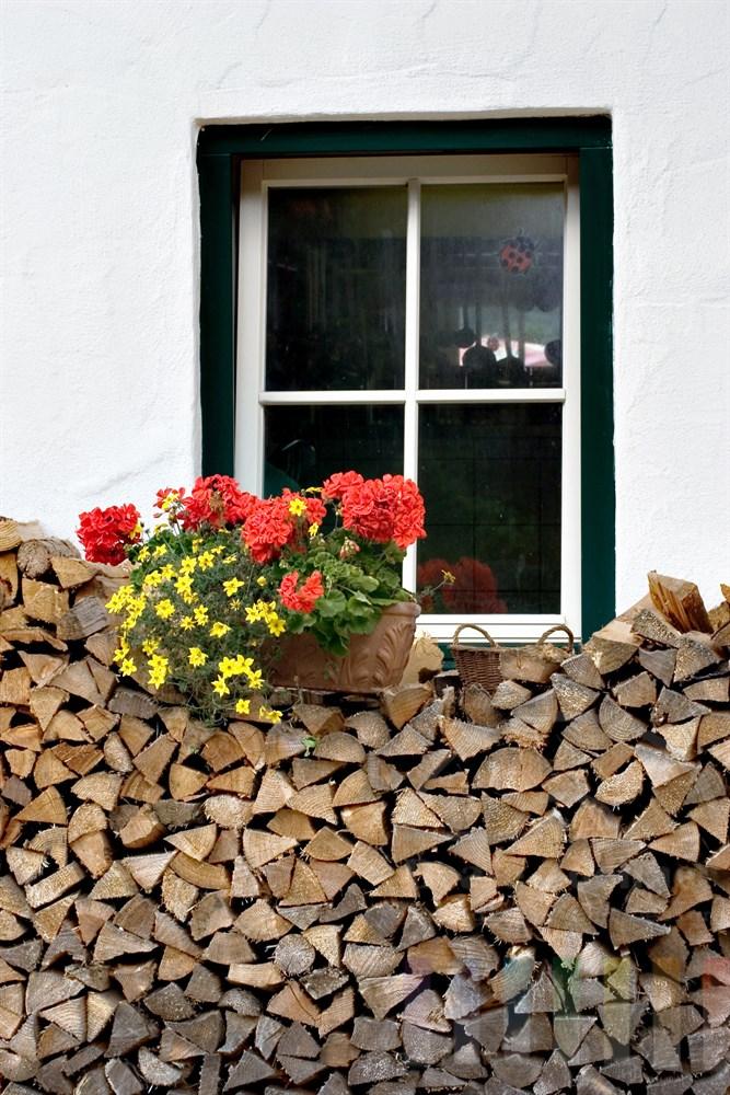 gestapeltes Feuerholz vor Sprossenfenster. Ein mit Blumen bepflanzter Terrakottatopf steht auf dem Holzstapel