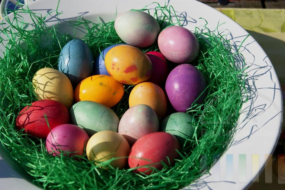Bunt gefärbte Ostereier liegen in künstlichem Gras auf einem weißen Teller und glänzen im Sonnenlicht